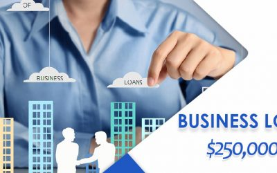 Clarity of the $250,000 Business Loans – COVID19 Help